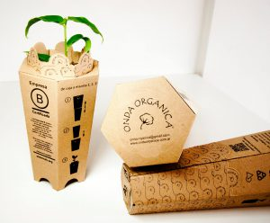 Packaging Ecológico | Nancy Fernandes