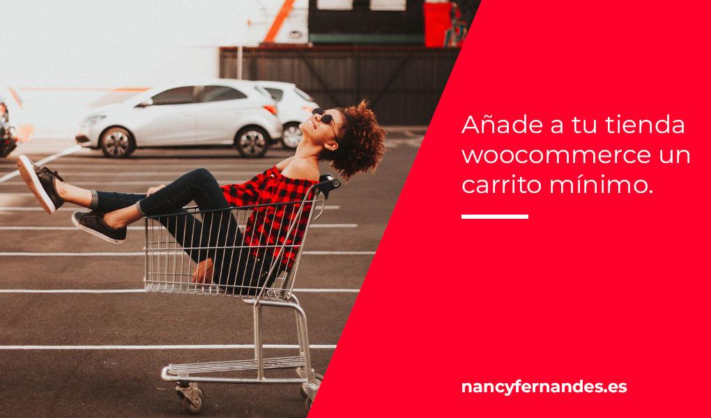 Añadir un pedido mínimo en euros a tu tienda online woocommerce